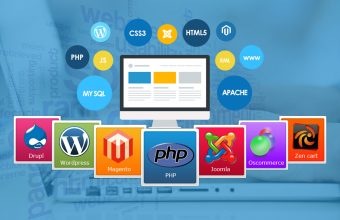 Local Web Development Services
