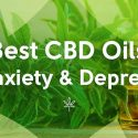 Dealing With Pain and Anxiety? Here's How to Choose the Best CBD Oil for Your Ailment