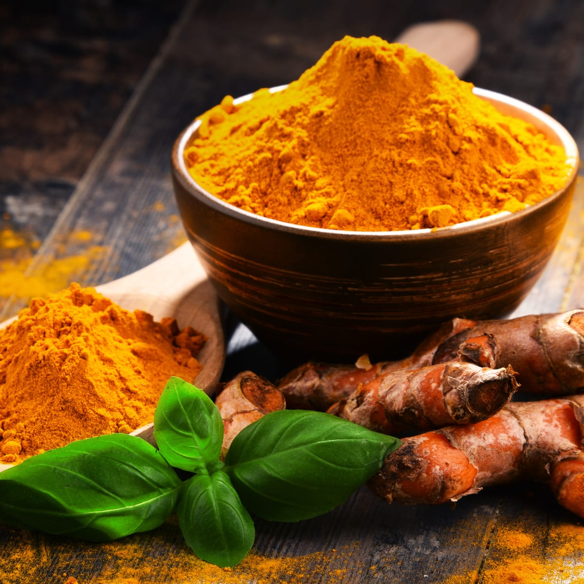 Plant-Based Turmeric Protein Powder